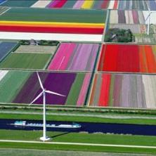 Все, что вы хотели знать об учебе в Голландии