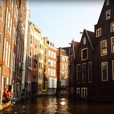 네덜란드의 대학 학비
