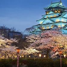 Razones para estudiar en Japón